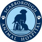 www. scarboroughanimalhospital.com