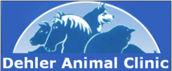 Dehler Animal Clinic